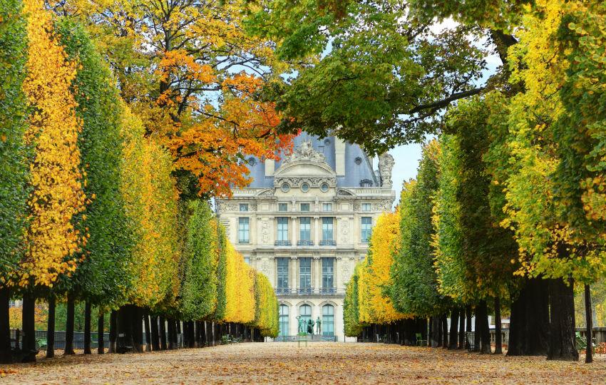 Jardin-des-Tuileries-en-automne-850x540-C-Thinkstock